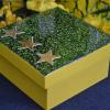 Caixa Decorativa COPA BRASIL